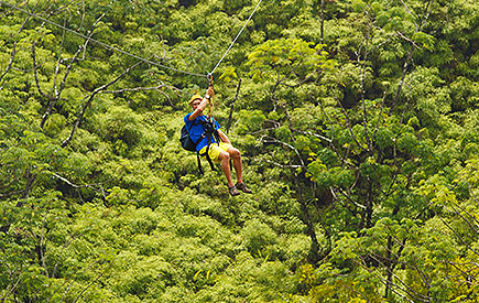 Eco-Adventure Zipline